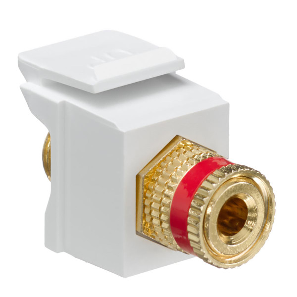 Leviton® QuickPort Binding Post Connector Red Stripe White [40833-BWR]